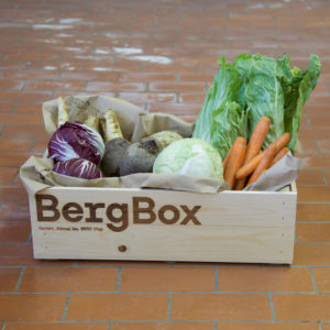 BergBox GemüseBox L