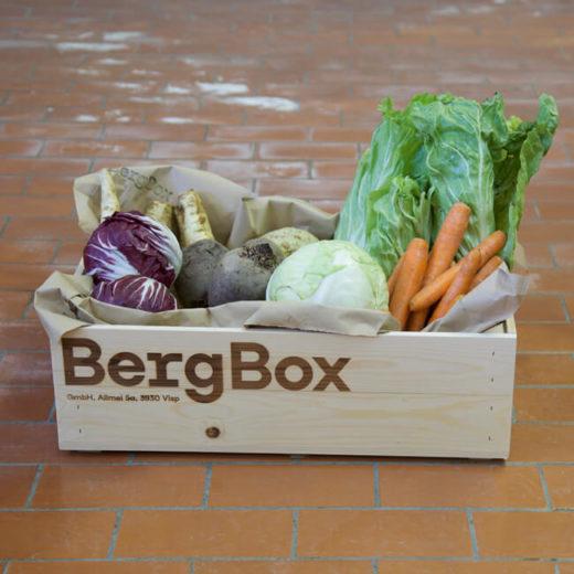 BergBox GemüseBox L