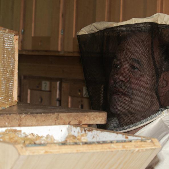 Honig aus dem Wallis